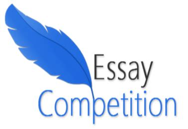 Winning scholarship essay sample